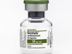 默沙东新药Keytruda激发人体免疫系统,抗击晚期癌症