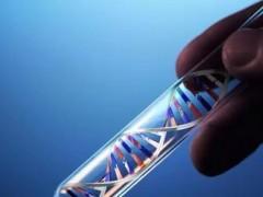 液体活检技术或有望成为早期方便检测肝细胞癌的新型手段