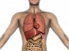 大剂量放疗可改善胰腺癌患者生存期