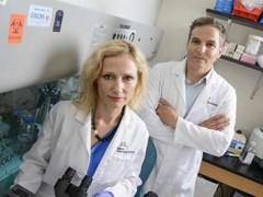 三阴乳腺癌离打破无靶向药的现状又进一步了?