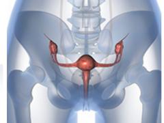 子宫内膜癌放化疗与单纯放疗效果相差无几 还要额外忍受化疗的痛苦吗
