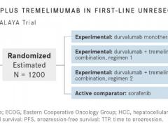 新组合:两种免疫治疗药物联合有望打破肝癌常规治疗