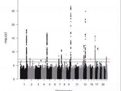 2万人1130万基因分析研究发现,胰腺癌与这5种基因突变相关!