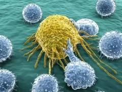 导致癌症最重要的因素是什么?(史上最具深度癌症科普!)