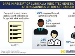 乳腺癌高危人群遗传咨询现状调研