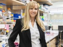 科学家找到治疗脑胶质瘤的新靶点