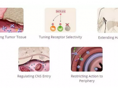 武田新合作开发新型肿瘤免疫疗法组合