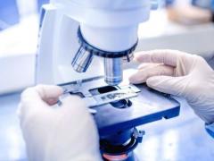 骨髓纤维化药物能够诱导淋巴瘤??