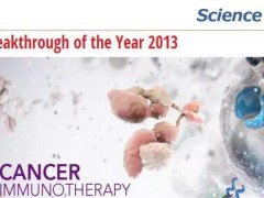 关于细胞免疫治疗技术的全面客观分析!肿瘤患者究竟该如何选择?