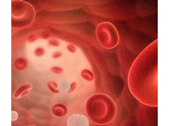 FDA批准SL-401用于治疗罕见血癌的优先审查