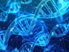 癌症病因,癌症基因检测,癌症基因突变有哪些,癌症基因突变靶向药