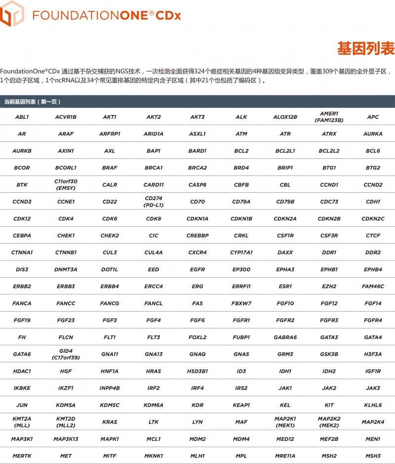 foundation基因列表
