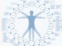 干货|肺癌患者如何选择PD-1?K药、O药、T药、I药用药信息汇总!
