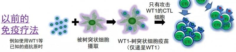 历代细胞免疫疗法治疗
