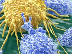 长达10年研究发现:他汀类降脂药可预防肝癌,也能降低其死亡率