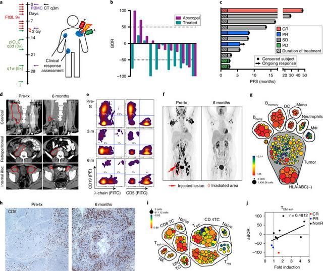 原位疫苗接种使惰性B细胞淋巴瘤患者全身肿瘤消退