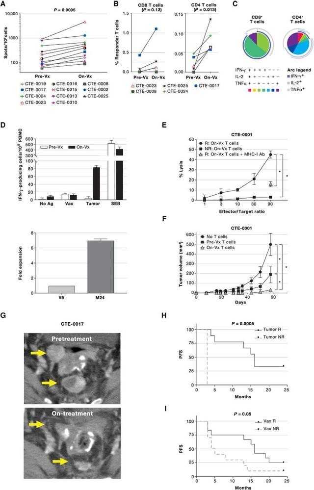 卵巢癌树突细胞疫苗治疗数据