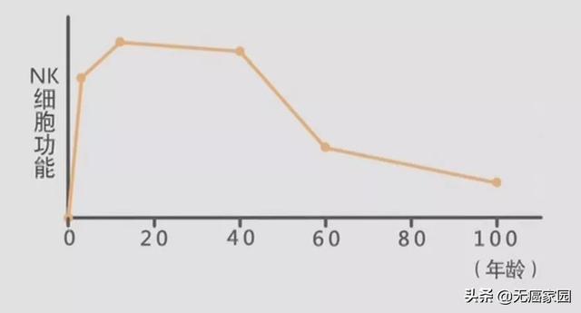 nk细胞数量随着年龄变化