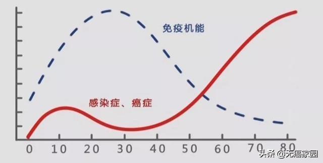 NK细胞比例越高越不容易得癌症