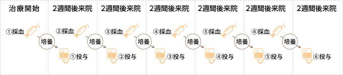 日本细胞免疫治疗的周期