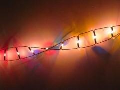 扩散!免费基因检测机会来了!面向全国招募两类癌症患者