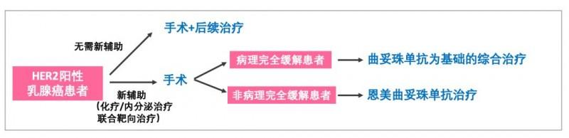 有无新辅助化疗乳腺癌患者治疗对比