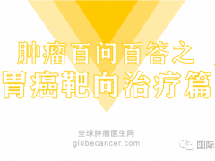 胃癌靶向药物,胃癌靶向治疗药物-曲妥珠单抗(Trastuzumab)