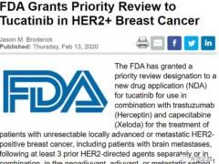 乳腺癌新药Tucatinib(中文名图卡替尼)获FDA优先审批,上市在即