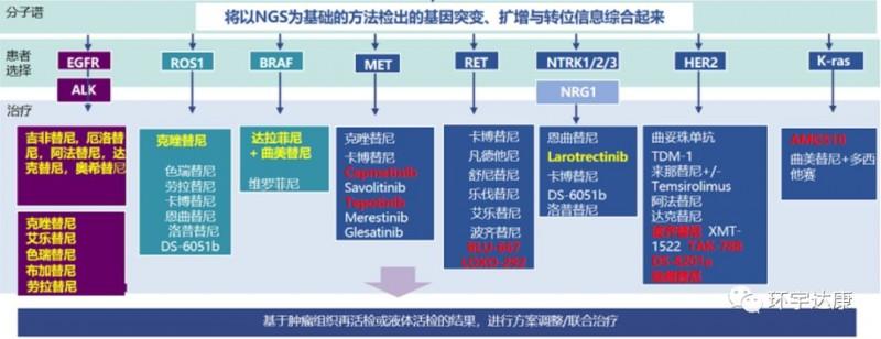 肺癌基因突变及对应的靶向药
