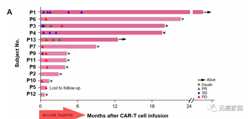 CAR-T细胞输入后各时间点的效果