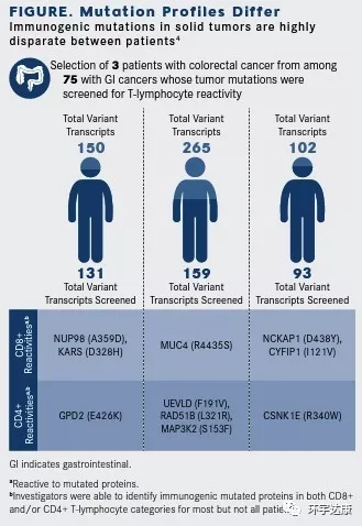 tils疗法精准识别肿瘤