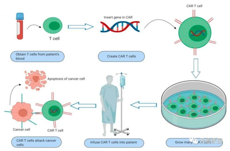 CAR-T细胞疗法流程