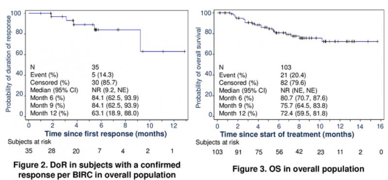 Envafolimab(KN035)治疗数据