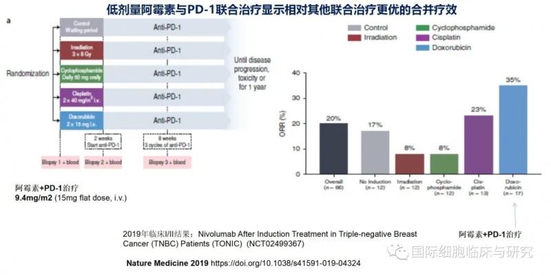 低剂量阿霉素与PD-1联合治疗显示相对其他联合治疗更优的合并疗效