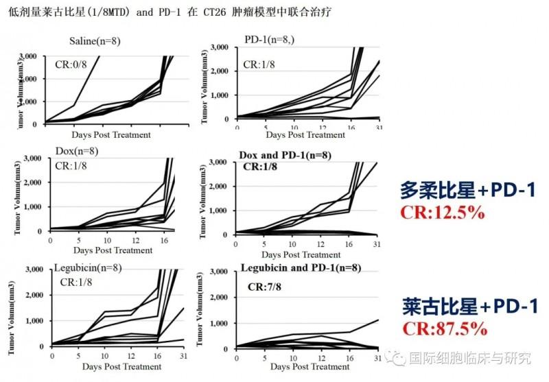 低剂量莱古比星(1/8MTD)和PD-1在CT26肿瘤模型中联合治疗