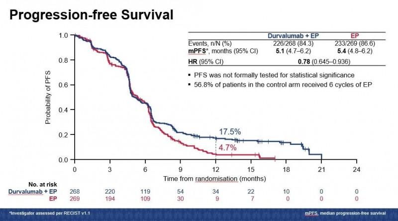 两组患者12个月PFS、ORR比较