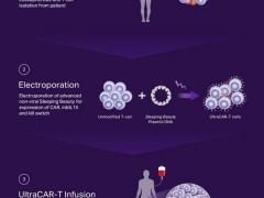 晚期卵巢癌细胞免疫疗法治疗,卵巢癌CAR-T细胞免疫疗法治疗势不可挡
