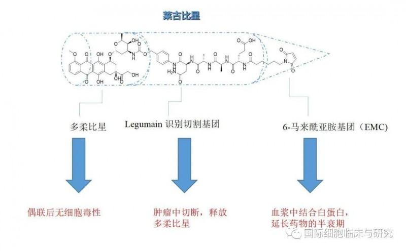 莱古比星分子式