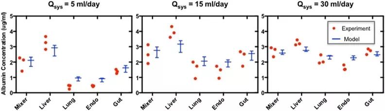 4-MPS平台中系统流速的增加增强了MPS之间的分子交换,而MPS功能没有明显改变