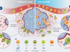 2020年转移性胰腺癌治疗新疗法,PD1免疫联合靶向治疗,K药+BL-8040(Motixafortide)疗效令人鼓舞