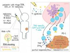 黑色素瘤疫苗,黑色素瘤RNA疫苗FixVac患者PD-1耐药后仍有效