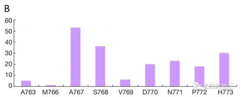 EGFR ex20-ins突变的不同类型