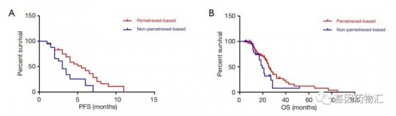 EGFR ex20-ins突变治疗数据