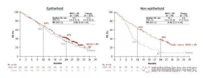 纳武单抗联合依匹木单抗治疗上皮型间皮瘤和非上皮型间皮瘤治疗效果对比