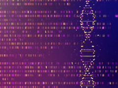未来卵巢癌基因检测有望更好的预测卵巢癌存活率和生存率