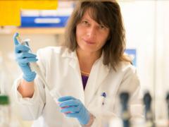 关于三阴性乳腺癌靶向治疗联合化疗的研究