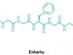 胃癌新药,抗体偶联(ADC)药物Enhertu(DS-8201、Deruxtecan)获FDA优先审查资格