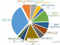 """卵巢癌基因检测,卵巢癌BRCA基因检测让""""沉默的杀手""""开口说话"""