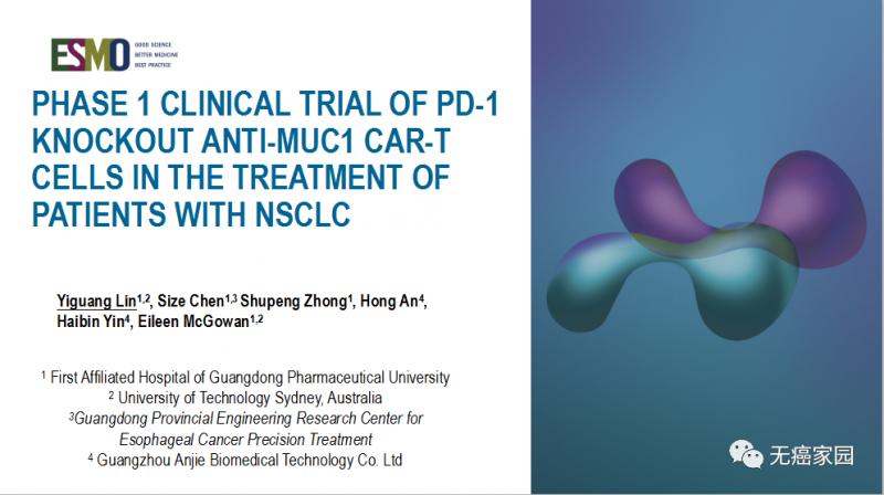 非小细胞肺癌免疫联合疗法,NK细胞免疫疗法联合PD-1/L-1有效抑制肿瘤生长