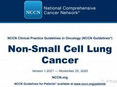 2021年最新非小细胞肺癌治疗方案,非小细胞肺癌NCCN治疗指南,肺癌靶向治疗方案,肺癌最新治疗方案